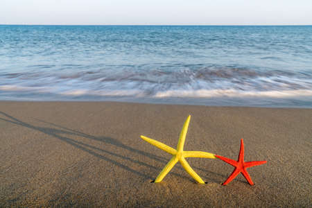 two starfish are next at the seaside of Greece Stock Photo