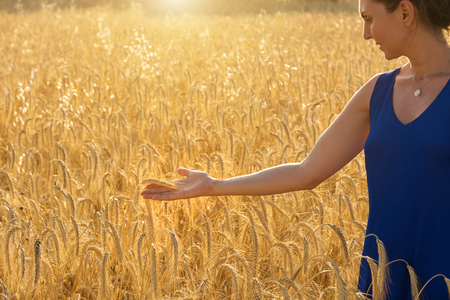 girl in blue dress touching a ear of wheat in a wheat field in the sunset Stock Photo