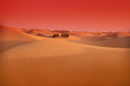 morning colored Sahara desert in Tunisia. shooting with color filters