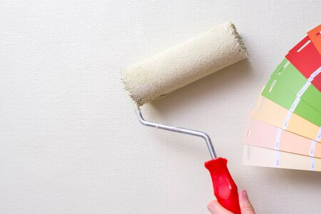 the painter holds the paint roller against the light wall and the color samples. the concept of repair in the apartment and painting the walls Archivio Fotografico
