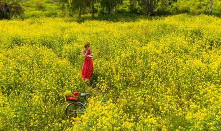 a freelancer girl works behind a laptop in a spring flower and sunny field. a freelancer girl is working at a laptop in a spring blooming and Sunny field. Archivio Fotografico