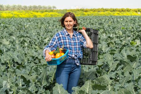 woman resting after work in the field and holds a basket with harvested vegetables. woman working on an agricultural field on a sunny day Archivio Fotografico - 143830445