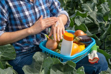 woman works in an agricultural field and smears her hands with sun cream. on a woman lap a basket with vegetables and a white tube with sunscreen Archivio Fotografico