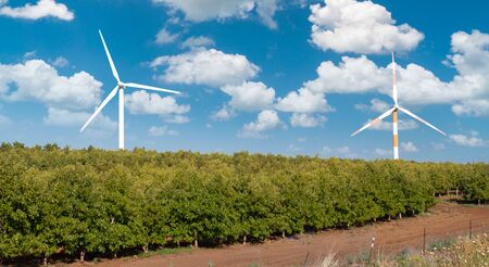 wind generators work in the wind in Israel. Israeli northern landscape with blue sky and clouds. kibbutz and gardens and road Archivio Fotografico - 146498901