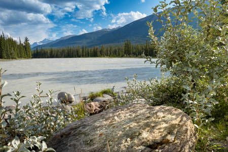 wild silky white: Athabasca River in Canadian Rocky Mountains