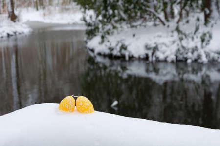 easteregg: Easter background: Egg in the snow