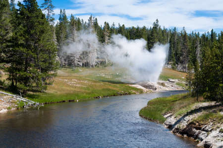 bridger: Riverside Geyser errupts on a summer afternoon in the Upper Geyser Basin.  Yellowstone National Park, Wyoming
