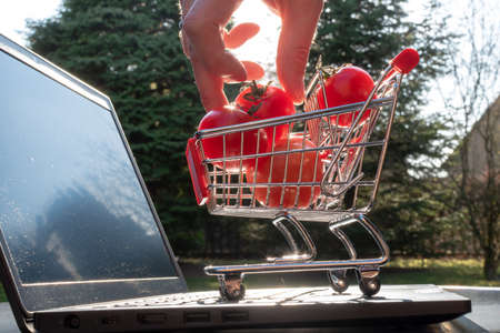 Concept of online grocery shopping. A miniature shopping cart with tomatoes is standing an a Notebook. Banque d'images
