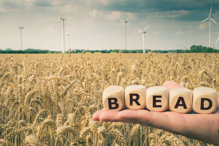 Cubes form the word bread in front of a wheat field.