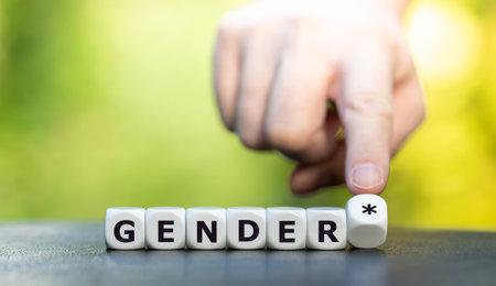 "Dice form the expression ""gender *"" (gender star). A symbol for a gender equitable administrative language in Germany."