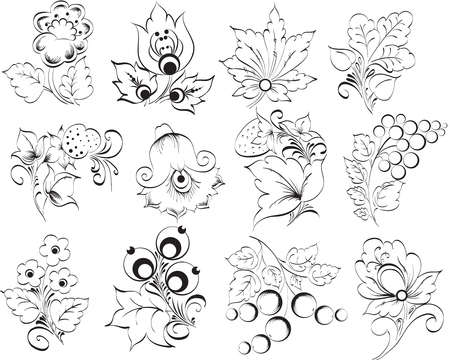 Decorative elements Vector illustration Vector