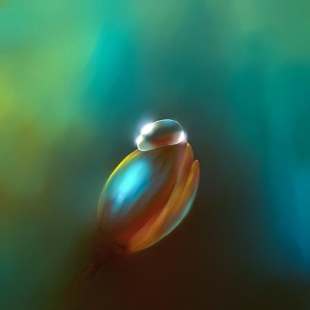 digital drawing flower bud with a drop