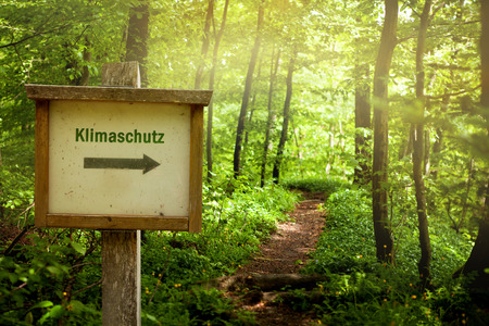 forest wood: Climate Protection Climate Protection German Language