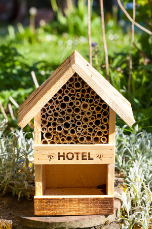Bee and insect hotel in a garden