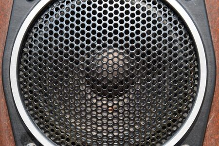 Low-frequency speaker of vintage Soviet acoustics. Dynamics 30gd-2 Stock fotó