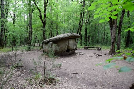 Dolmen in Shapsug. Forest in the city near the village of Shapsugskaya, the sights are dolmens and ruins of ancient civilization. Standard-Bild