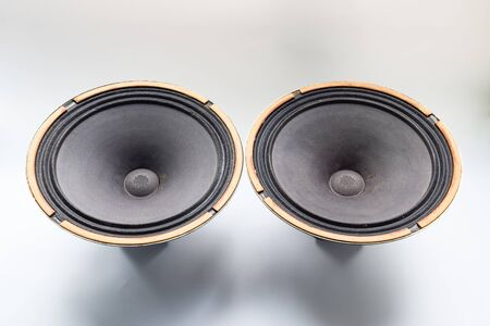 Antique Soviet woofer 5gd-3 from vintage acoustics Symphony.
