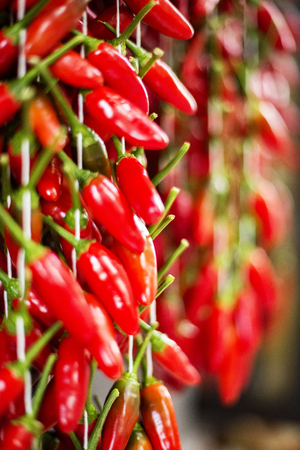 Strands of hanging red chili peppers