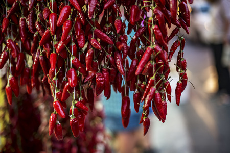 enchantment: Strands of hanging red chili peppers