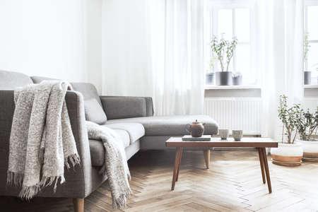 Interior elegante de la sala de estar con sofá y mesa de diseño pequeño. Paredes blancas, plantas en el alféizar de la ventana. Parquet de madera marrón.