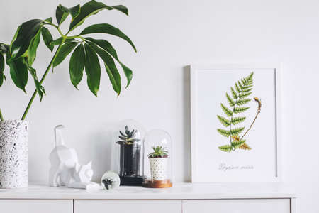 Creative cupboard with mock up poster frame, cat figure, tropical leaf and plants in glass garden. Modern scandinavian interior. Banque d'images
