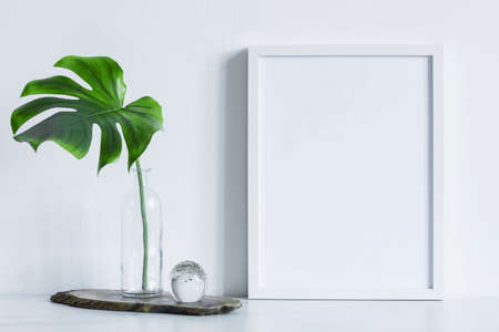 Minimalistic composition of mock up photo frame with green tropical leafs in glass design vase. Stylish concept of mockup frame. White backgrounds wall.