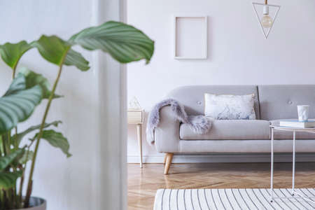 Stylish and cozy scandinavian white interior with design sofa, coffee table, pillow, blanket, big tropical plant and mock up photo frame. White walls and triangle lamp. Zdjęcie Seryjne