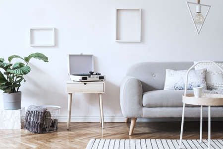 Stylish scandinavian white interior with design sofa, tropical plant, pillows, blanket, gramophone and mock up photo frames. White background walls, brown wooden parquet and modern triangle lamp.