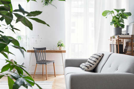 Modern scandinavian living room with design furniture, grey sofa, plants, bamboo bookstand and wooden desk. Brown wooden parquet. Nice apartment. Stylish decor. Bright and sunny side of home space. Zdjęcie Seryjne