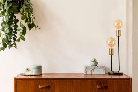 Stilvoller und gestalterischer Raum der Inneneinrichtung mit Vintage-Schrank, eleganten Accessoires aus Marmor, Hängepflanze und goldener Tischlampe. Gemütliche Wohnkultur. Minimalistisches Konzept. Platz kopieren. Echtes Foto, Vorlage.