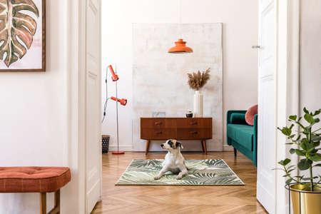 Composición elegante del interior de la casa retro con marco de póster simulado, perro en la alfombra, muebles vintage, sofá de terciopelo, lámparas de diseño, plantas y accesorios elegantes. Bonita decoración para el hogar de las salas de estar.