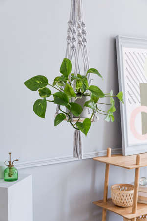 Close up of handmade macrame shelf planter hanger for indoor plants, rattan shelf, poster frame and elegant accessories. Cozy home decor. Stylish and minimalistic boho interior of living room.