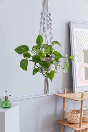 Nahaufnahme eines handgefertigten Makramee-Regal-Pflanzeraufhängers für Zimmerpflanzen, Rattanregal, Posterrahmen und elegantes Zubehör. Gemütliche Wohnkultur. Stilvolles und minimalistisches Boho-Interieur des Wohnzimmers.