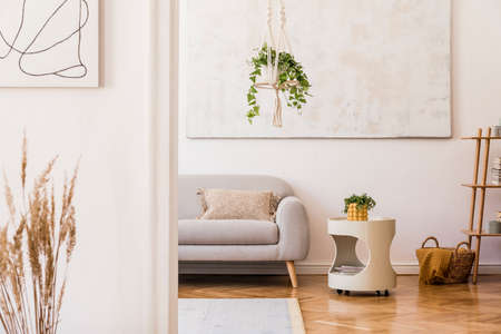 The modern boho interior of sitting room in cozy apartment with design gray sofa, white coffee table, shelf, plants, flowers and elegant personal accessories. Stylish home decor. Abstract painting.