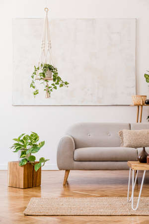 The stylish boho compostion at living room interior with design gray sofa, wooden coffee table, cube, bamboo shelf, a lot of plants and elegant personal accessories. Design home decor. Template.