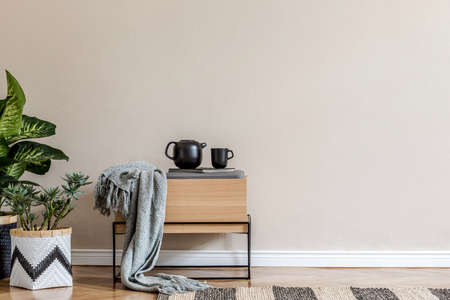 Stylish scandinavian home interior of living room with design wooden commode, rattan basket with plants, teapot, copy space and elegant accessories in modern home decor. Template.