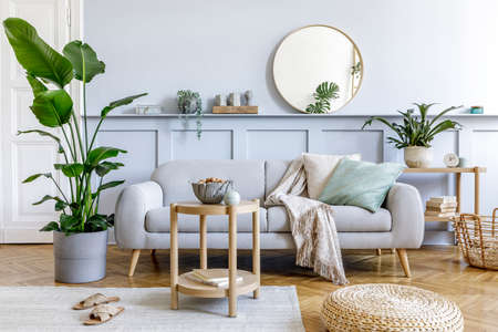 Stylish living room interior with design gray sofa, coffe table, pouf, basket, shelf, mirror, tropical plants, decoration, carpet, pillows and elegant personal accessories in modern home decor.