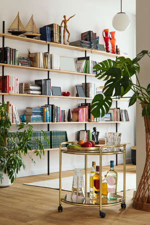 Modern composition of open space interior with gold kitchen bar, plants, home library, decoration and elegant personal accessories. Template. Reklamní fotografie