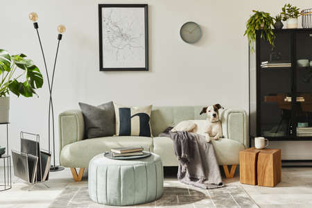 Beautiful dog lying on the green sofa at stylish loft interior with green sofa, design pouf, mock up poster map, furniture, carpet, plants and decoration.