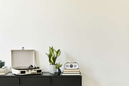 Stylish composition of living room interior with design black commode, plants, book, vinyl recorder, decoration and elegant personal accessories. Copy space. Modern home decor. 版權商用圖片