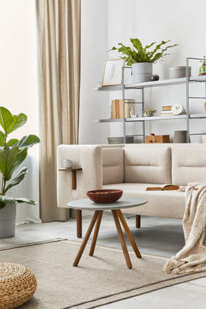 Cozy interior with stylish sofa, gray coffee table, bookcase, plants, carpet, decoration, beige macrame and elegant personal accessories. Neutral living room in classic house. Template. 版權商用圖片