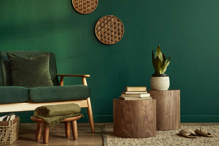 Minimalist living room interior in stylish house with design velvet sofa, carpet on floor, brown wooden furniture, plant, book, stool, perosnal accessories, copy space background in home decor.