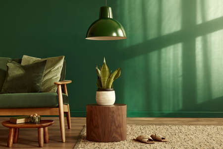 Minimalist living room interior in stylish house with design velvet sofa, carpet on floor, brown wooden furniture, plant, book, pendant lamp, perosnal accessories, copy space background in home decor. 版權商用圖片