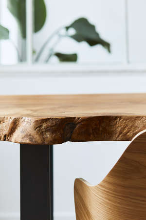 Stylish and cozy compositon of craft oak wooden table with chairs, plant and modern floor in beautiful interior of design home. Template.