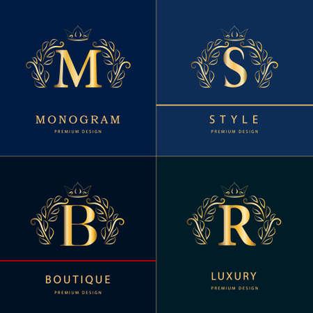 r: Monogram design elements, graceful template. Elegant line art  design. Letter B, M, S, R. Emblem. Vector illustration Illustration