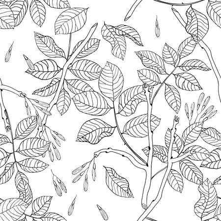 ash tree: Vector hand drawn black and white floral seamless pattern of ash tree for textile, fabric, postcards, wallpaper, scrapbooking and others Illustration
