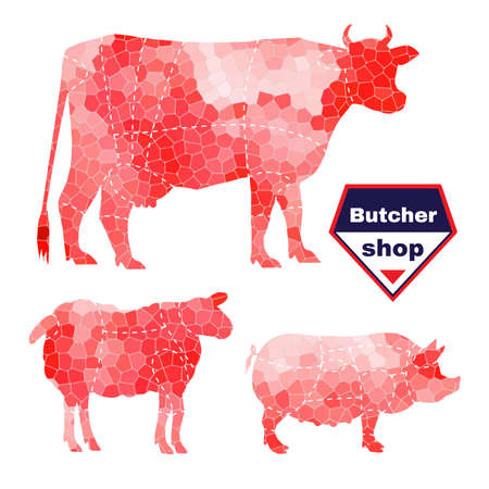 shop for animals: Set of farm animals for butcher shop with anatomic cut