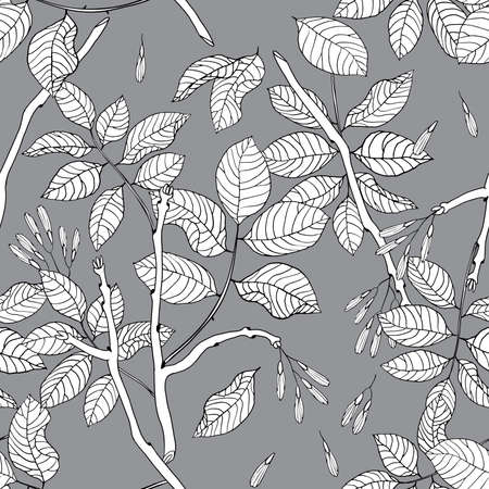 mountain ash: Vector hand drawn black and white floral seamless pattern of ash tree for textile, fabric, postcards, wallpaper, scrapbooking and others Illustration