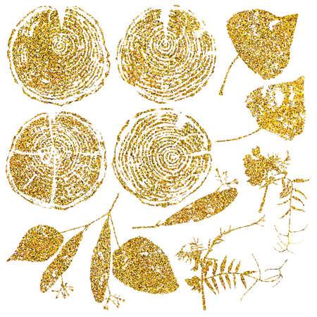 Vector hout splitst en herbarium set geïsoleerd op een witte achtergrond. Vector hout splitst en herbarium set met goud glitter voor uw ontwerp. Stock Illustratie