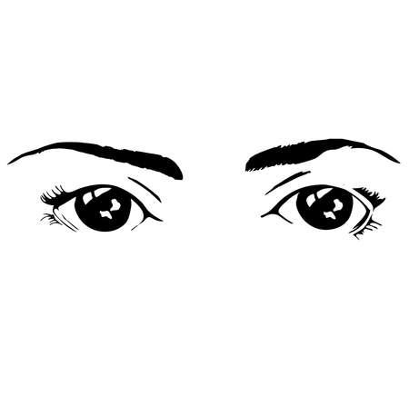 beatiful: two beatiful isolated black eyes with eyebrows of female on the rhite background Illustration